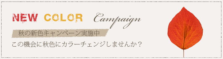 NEW COLOR Campaign